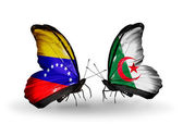 Butterflies with Venezuela and  Algeria flags on wings — Stock Photo