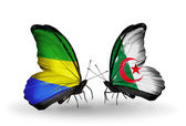 Butterflies with Gabon and  Algeria flags on wings — Stock fotografie