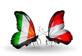 Butterflies with Ireland and  Austria flags on wings — Stock Photo