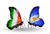 Butterflies with Ireland and  Argentina flags on wings — Stock Photo