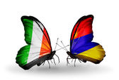 Butterflies with Ireland and  Armenia flags on wings — Stock Photo