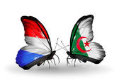 Butterflies with Luxembourg and Algeria flags on wings — Stock fotografie