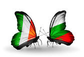 Butterflies with Ireland and Bulgaria flags on wings — Stock Photo