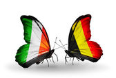 Butterflies with Ireland and Belgium flags on wings — Stock Photo