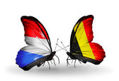 Butterflies with Luxembourg and Belgium flags on wings — Foto de Stock