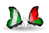 Butterflies with Nigeria and Belarus flags on wings — Stock Photo