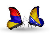 Butterflies with Armenia and  Bosnia and Herzegovina flags on wings — Stock Photo