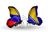 Butterflies with Venezuela and Bosnia and Herzegovina flags on wings — Foto de Stock