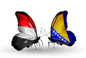 Butterflies with Yemen and  Bosnia and Herzegovina flags on wings — Foto de Stock