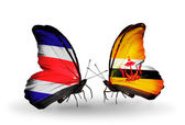 Butterflies with Costa Rica and Brunei flags on wings — Foto de Stock