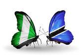 翼にナイジェリアとボツワナ フラグと蝶 — ストック写真