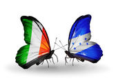 Butterflies with Ireland and Honduras flags on wings — Stock fotografie