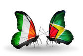 Butterflies with Ireland and Guyana flags on wings — Stock Photo