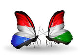 Butterflies with Luxembourg and Hungary flags on wings — Zdjęcie stockowe
