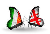 Butterflies with Ireland and Georgia flags on wings — Photo