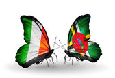 Butterflies with Ireland and Dominica flags on wings — Стоковое фото