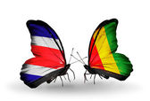 Butterflies with Costa Rica and Guinea flags on wings — Stock Photo