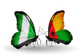 Butterflies with Nigeria and Guinea Bissau flags on wings — Стоковое фото