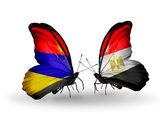 Farfalle con bandiere armenia ed egitto sulle ali — Foto Stock