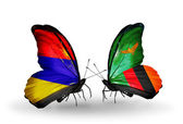 Butterflies with Armenia and  Zambia flags on wings — Stock Photo