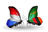 Butterflies with Luxembourg and Zambia flags on wings — Photo