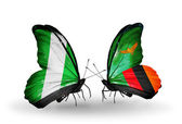 Butterflies with Nigeria and  Zambia flags on wings — Photo