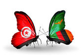 Butterflies with Tunisia and Zambia flags on wings — Stock Photo