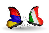 Butterflies with Armenia and  Ireland flags on wings — Stock Photo
