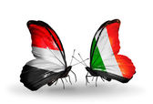 Butterflies with Yemen and   Ireland flags on wings — Stock Photo