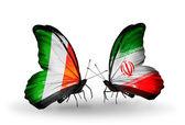 Farfalle con bandiere italia e iran ali — Foto Stock