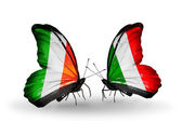 Butterflies with Ireland and  Italy flags on wings — Zdjęcie stockowe