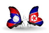 蝴蝶翅膀上的老挝和朝鲜的标志 — 图库照片