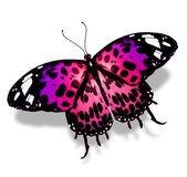 Fioletowy motyl — Zdjęcie stockowe