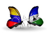 Butterflies with Venezuela and Lesotho flags on wings — Foto Stock