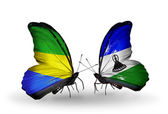 Butterflies with Gabon and Lesotho flags on wings — Foto Stock