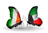 Butterflies with Ireland and  Kuwait flags on wings — Foto Stock