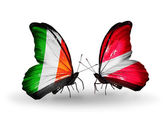 Butterflies with Ireland and  Latvia flags on wings — Foto Stock