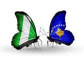 Butterflies with Nigeria and  Kosovo flags on wings — Foto Stock