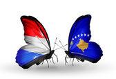 Motyle z flagi luksemburga i kosowa na skrzydłach — Zdjęcie stockowe