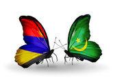 Farfalle con bandiere armenia e mauritania sulle ali — Foto Stock