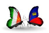 Farfalle con flag irlanda e liechtenstein sulle ali — Foto Stock
