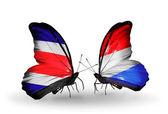 Farfalle con costa rica e bandiere di lussemburgo sulle ali — Foto Stock