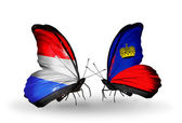 Butterflies with Luxembourg and  Liechtenstein flags on wings — Foto Stock