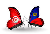 Butterflies with Tunisia and Liechtenstein flags on wings — Foto Stock