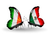 Butterflies with Ireland and  Mexico flags on wings — Zdjęcie stockowe