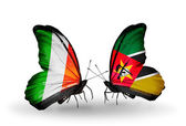 Butterflies with Ireland and  Mozambique flags on wings — Stock Photo