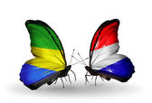Butterflies with Gabon and Holland flags on wings — Stock Photo