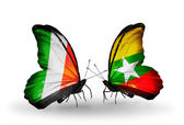 Butterflies with Ireland and Myanmar flags on wings — Stock Photo