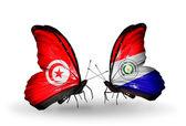翼にチュニジアとパラグアイのフラグと蝶 — ストック写真