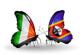 Butterflies with Ireland and Swaziland flags on wings — Stock Photo